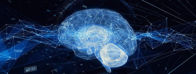 brain image ai